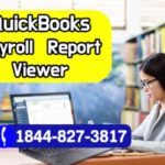 QuickBooks Payroll Report Viewer – How to View EMP Report QB Payroll